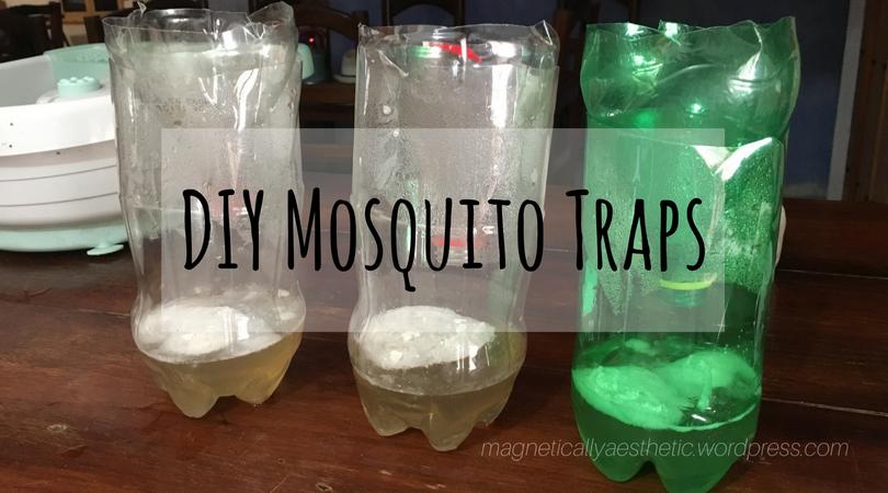 DIY: Mosquito Traps
